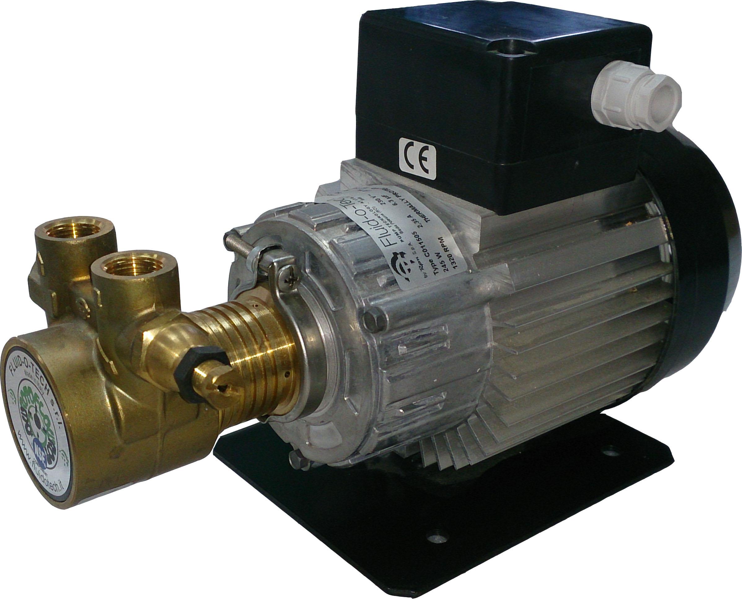 Rotary vane pump F PA204 | Triem